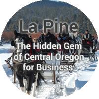 lapine community-bubble