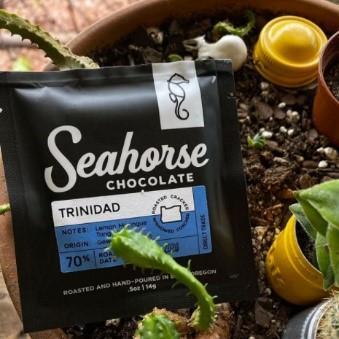 November 2020 PubTalk Pitching Company Seahorse Chocolate